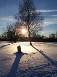 orme sulla neve